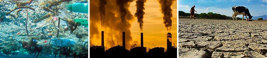 contaminación, consumo, desforestación