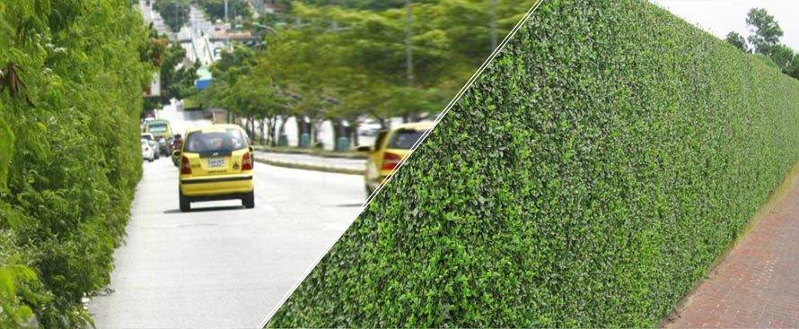 Mantención de áreas verdes y arbolado. EcoAlliance