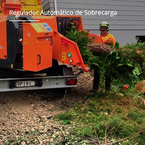 REGULADOR AUTOMÁTICO DE SOBRECARGA