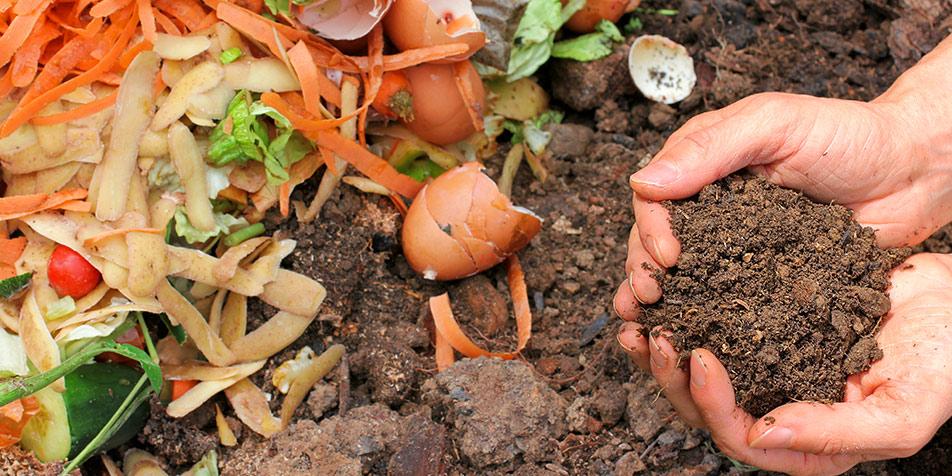 Solución Programa de Residuos Orgánicos - EAX