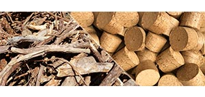 solucion_planta-briquetas